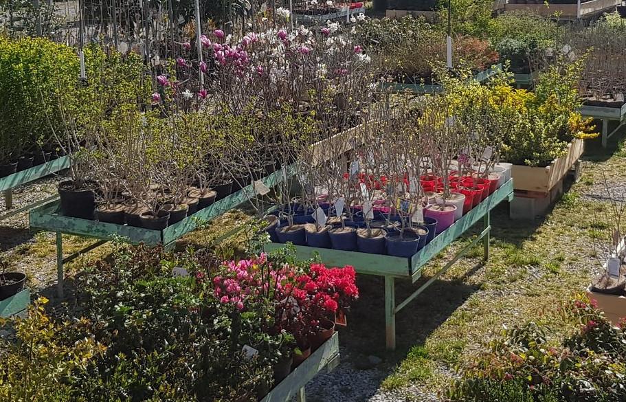 La Jardinerie Marrou : extérieur